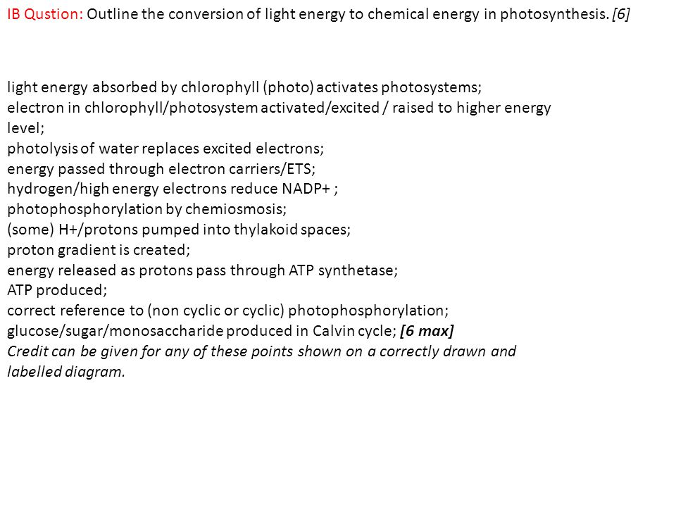 IB Qustion: Outline the conversion of light energy to chemical energy in photosynthesis. [6]